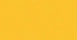 U114 ST15 Желтый Бриллиант